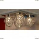 LSC-7907-04 Люстра потолочная Lussole Branca, 4 плафонов, хром, прозрачный