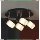 LSQ-6101-04 Спот потолочный Lussole Siliqua 4 плафона